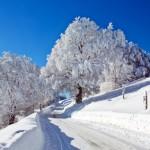 Vor dem Winter Betriebshaftpflicht checken
